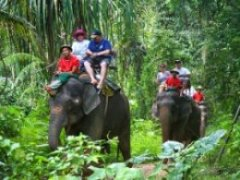 Thing To Do With Kids In PhuKet